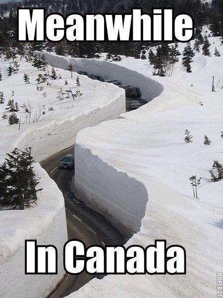 Snow brings UK to ahalt….