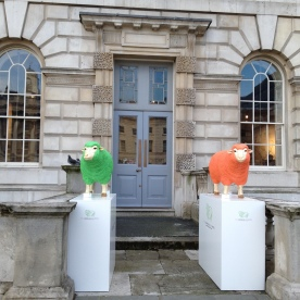 Baa Baa...orange & green sheep?