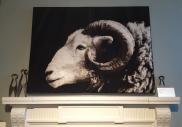 Beautiful tapestry